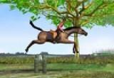 العاب الحصان وتخطى الحواجز
